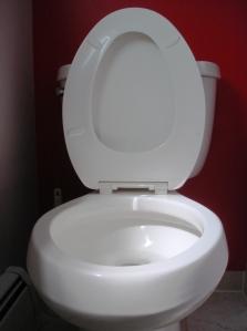 Toilet_seat_up