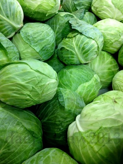 green produce1