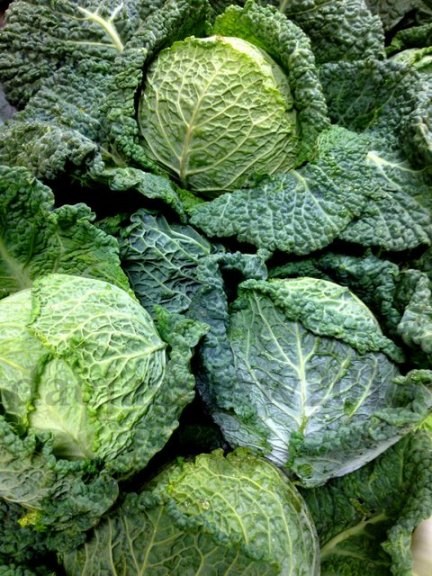 green produce2